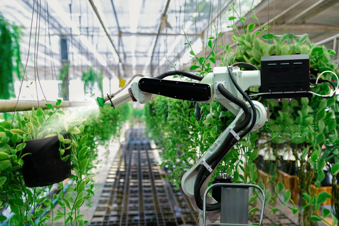 organische Solarzellen lassen sich vielseitig einsetzen